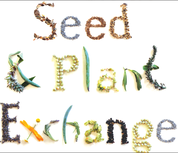 Image of Seed and Plant Exchange graphic
