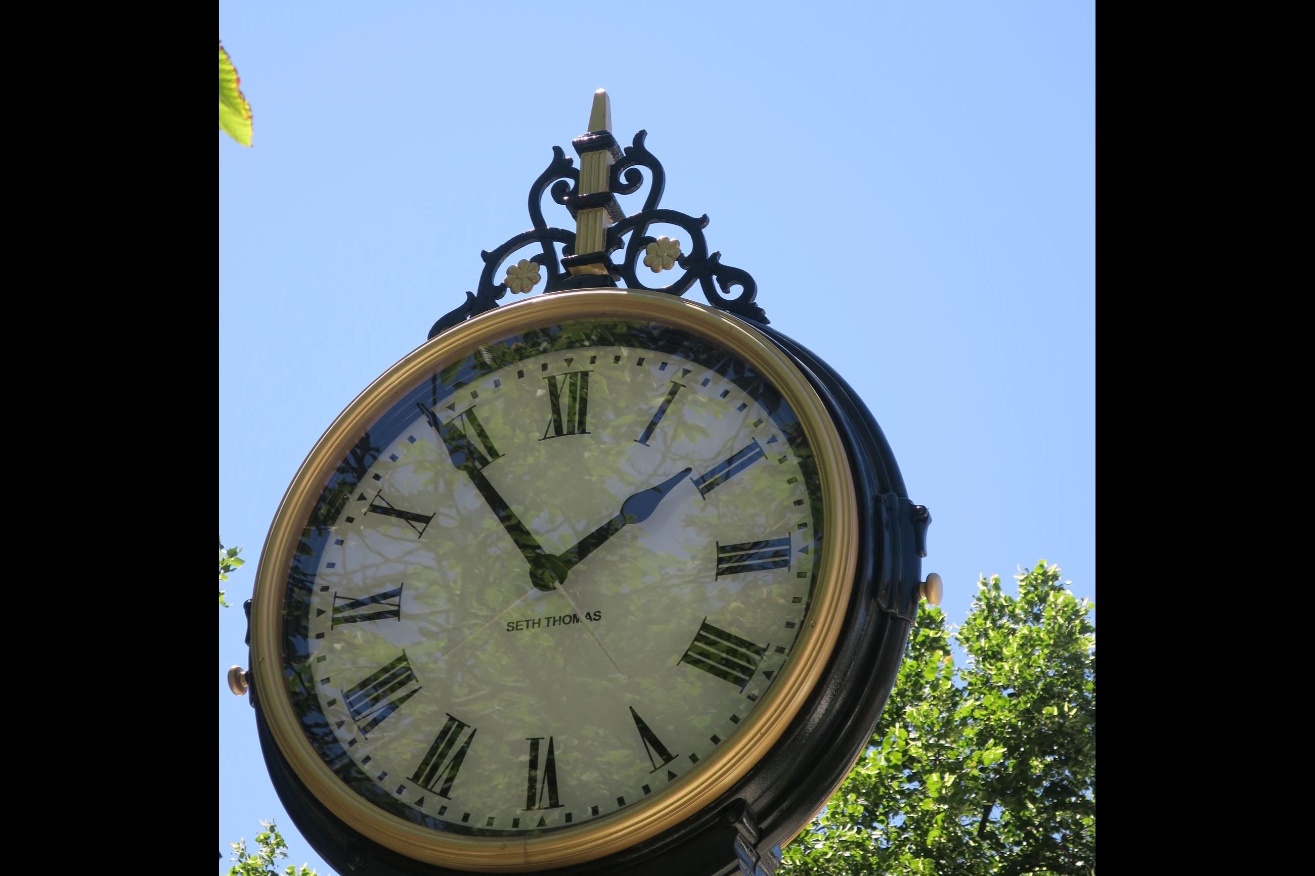 Seth Thomas Street Clock at Pulaski Park
