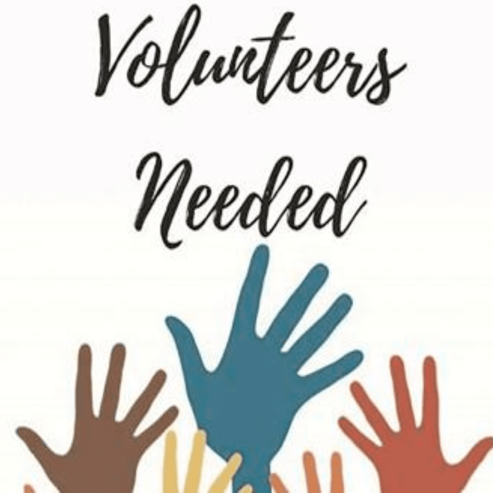Image of Shelter Volunteers Needed