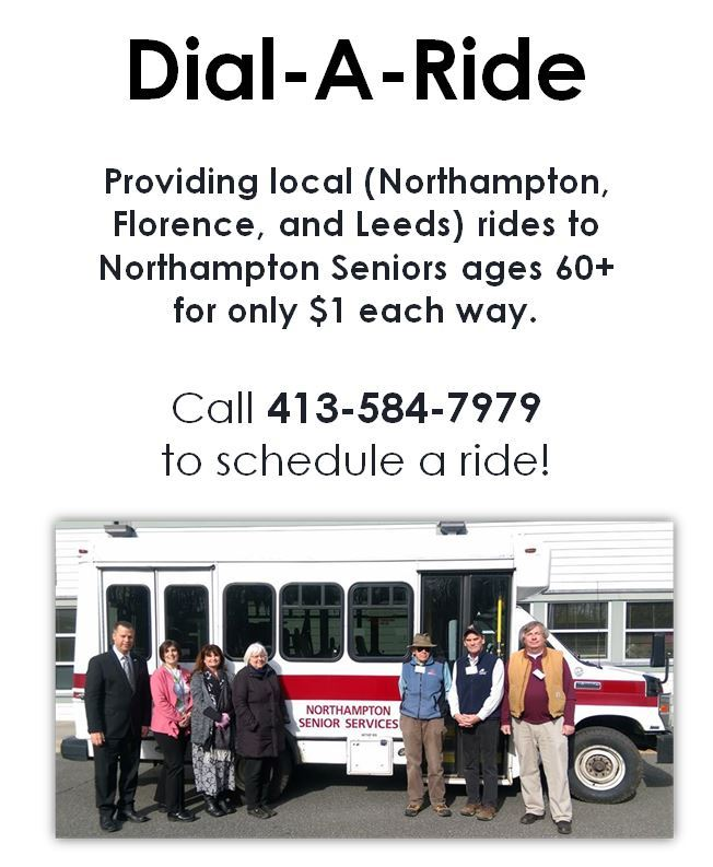 dial a ride poster
