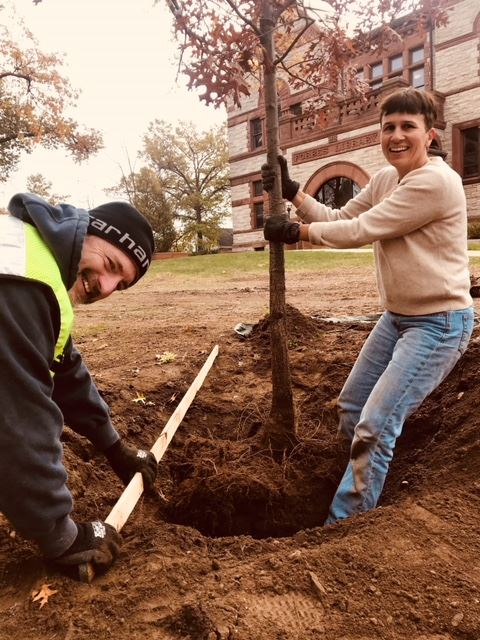 Two people planting a tree