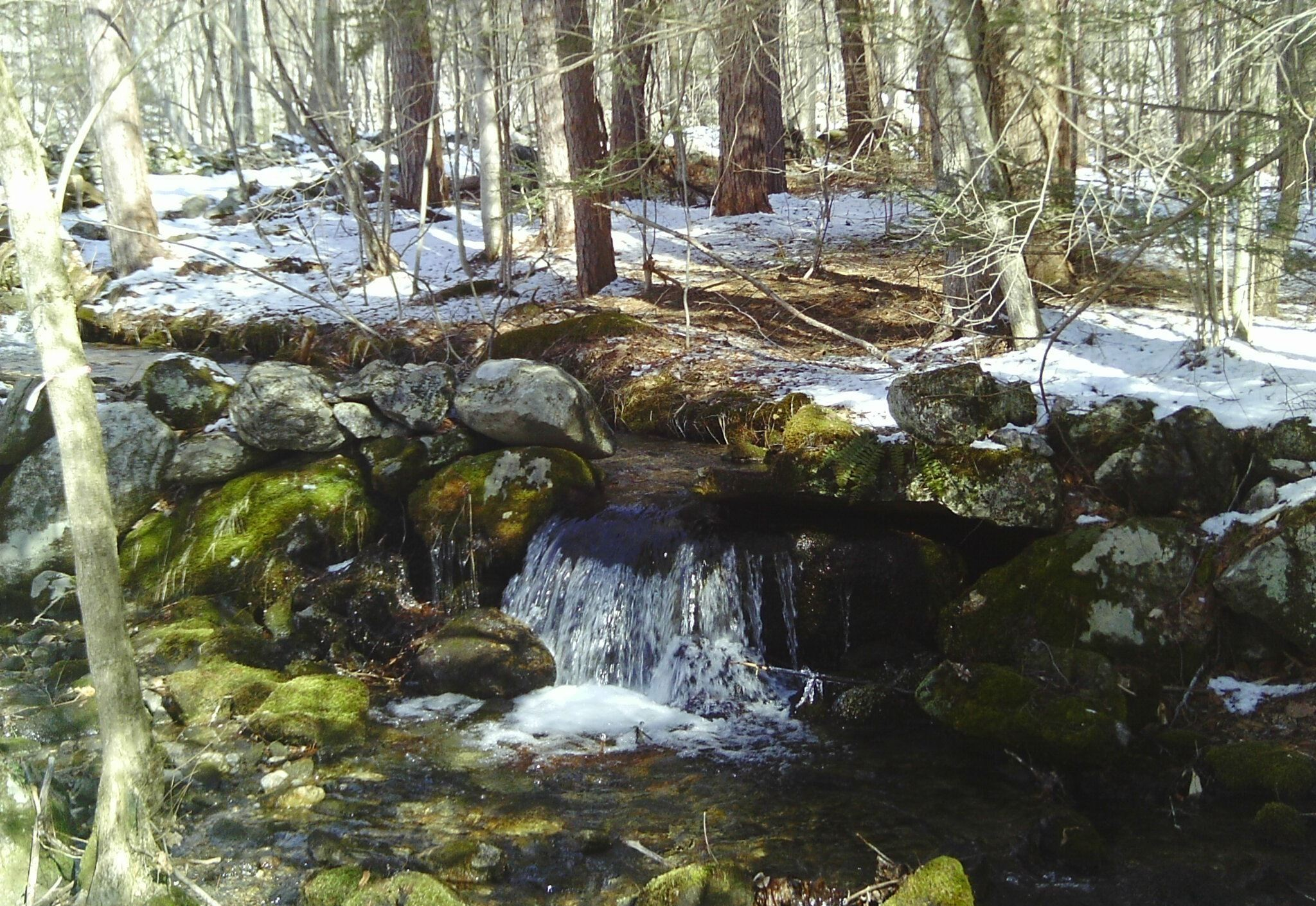 Image of Finney Brook in Conway