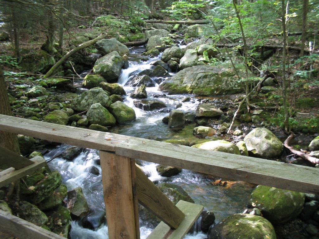 Image of Avery Brook